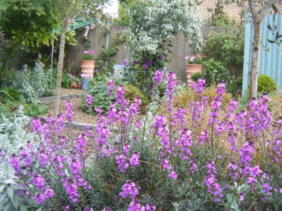 Garden Centre: Best Garden Centres In Ireland