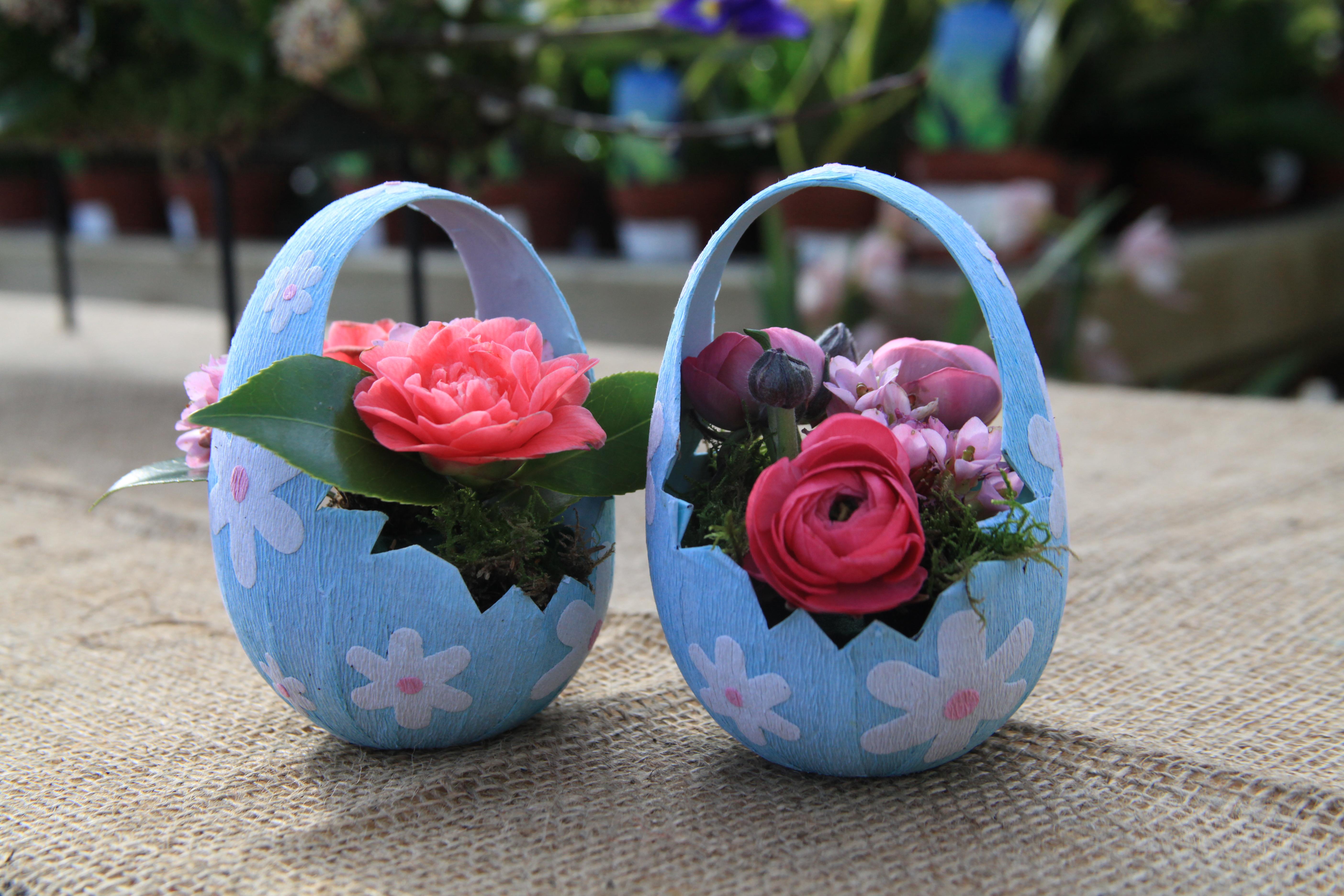 Flower Baskets Dublin : Garden plants powerscourt pavilion