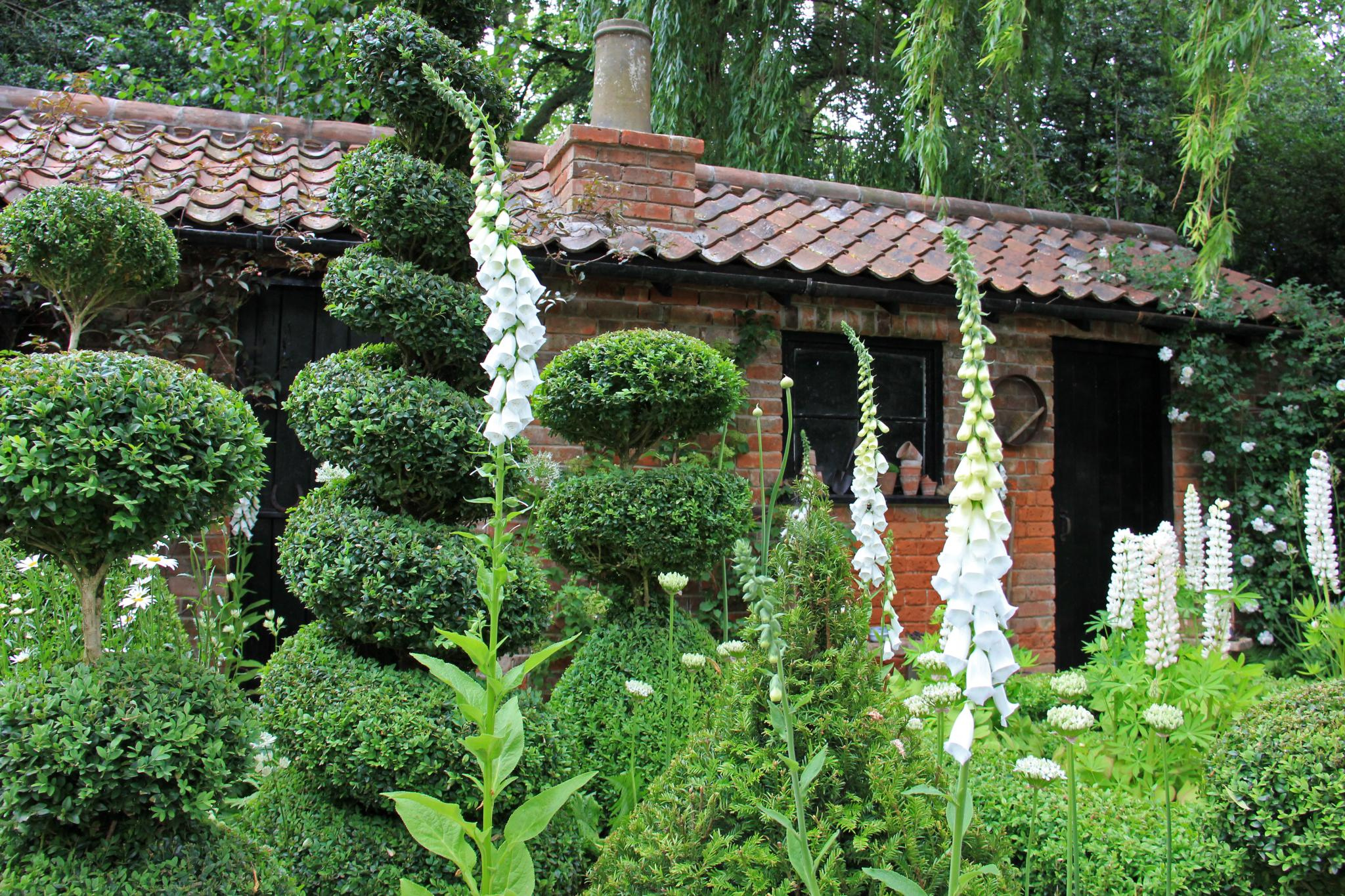 Garden Design Vacancies garden design vacancies: front yard landscaping plans shrubs